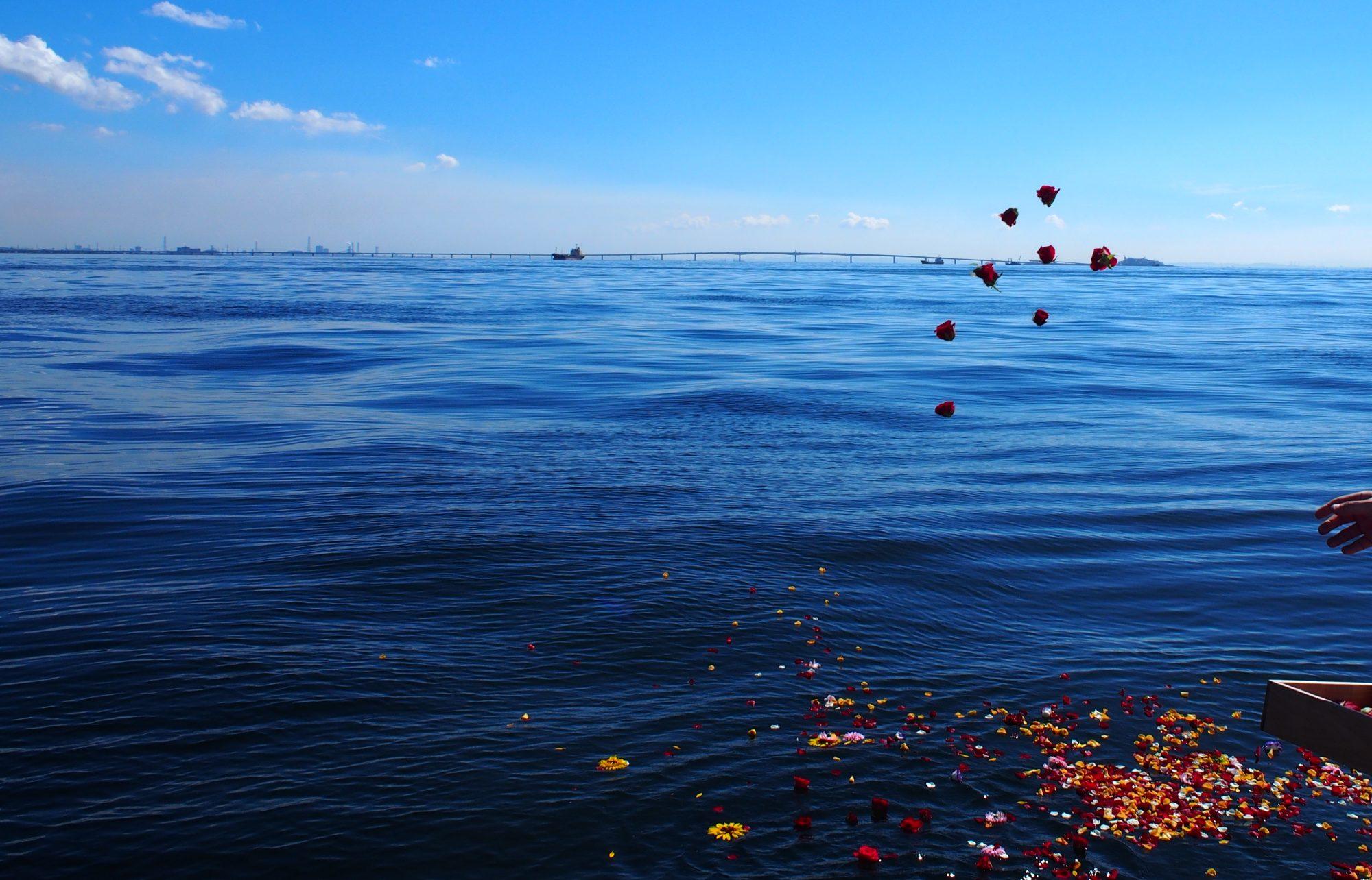 東京海洋散骨ブログ