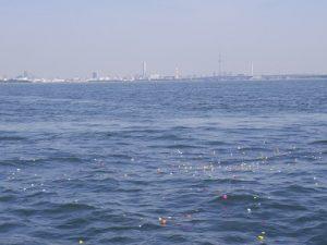 東京スカイツリーから見える場所で海洋散骨
