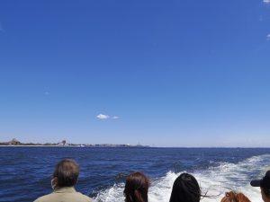 東京湾チャーター散骨
