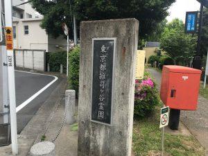 雑司ヶ谷霊園の墓じまいと海洋散骨