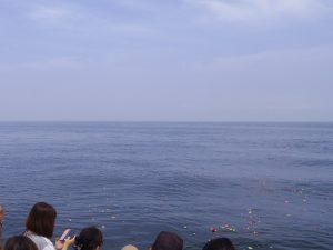 チャーター海洋散骨