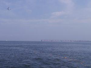 東京湾貸切散骨