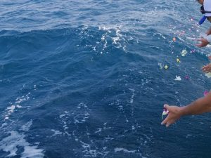 宮古島の海へ散骨