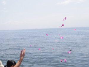 東京海洋散骨の貸切散骨